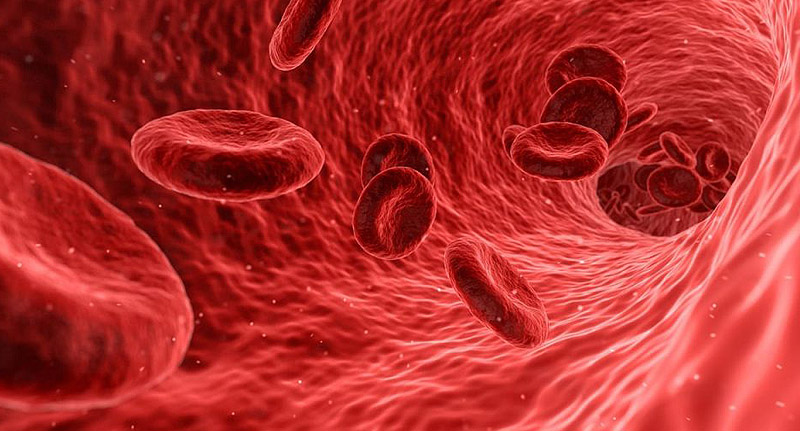 zasicenost krvi kiseonikom